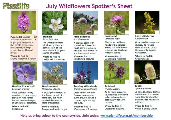 July_spotters_sheet_2015